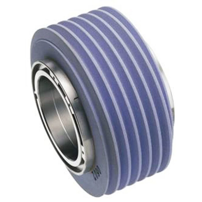 Worm grinding wheel for gear